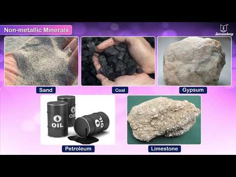 Mineral Resources | Social Studies | Grade 4 | Periwinkle