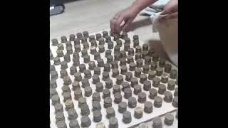 Сколько десяток в 3 литровой  банке.moneybox.часть 2