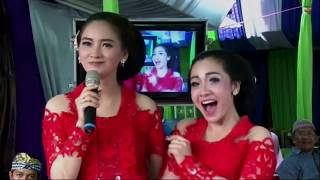 Download Mp3 Gubuk Asmoro Puji Laras Campursari Live Pondok Labu