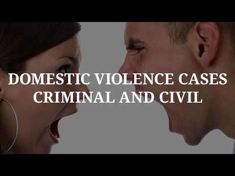 Litigating Domestic Violence Cases in FL (106) Michael A Haber Miami Criminal Defense DUI BUI Lawyer