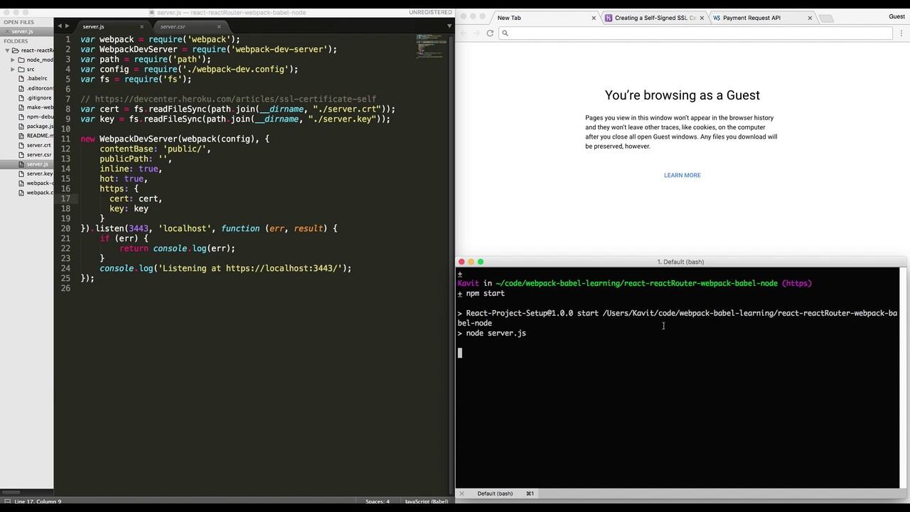 Running Webpack Dev Server Over Https Youtube