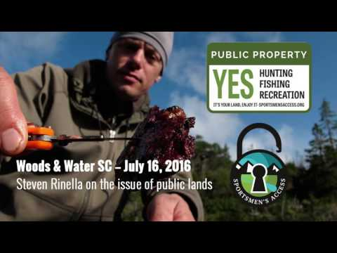 Woods & Water SC interview with Steven Rinella