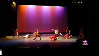 Troy High Culture Show 2014: K-pop
