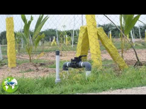 Friends Garden -Farm land  Madurai, Cheap Rate, Per cent 15,500 Rs only
