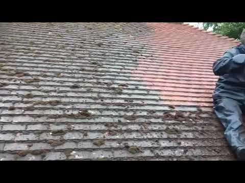 Roof Cleaning, Removing moss from a red tiled roof using the Doff steam cleaning system in London