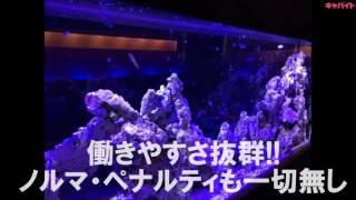 オシャレで綺麗なセクキャバ『Hearts』です✌ 東京セクキャバ求人【キャ...