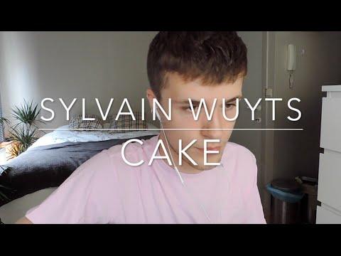 Melanie Martinez - Cake (acoustic cover) // Sylvain Wuyts