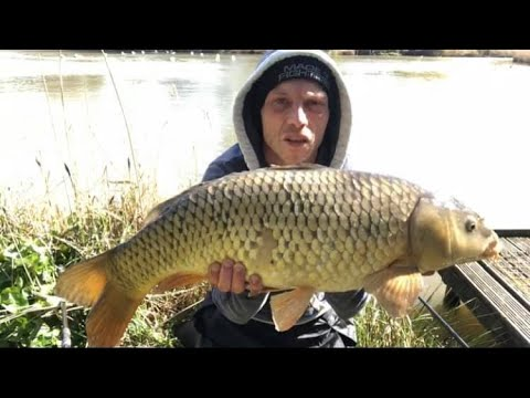 Carp Fishing With Corn And Chick Peas.