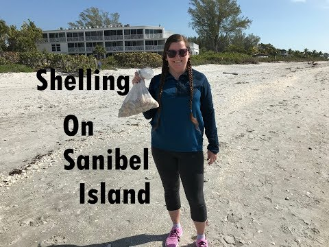 Night Shelling On Sanibel Island, Florida - February 2018