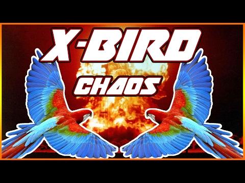 X-Bird - WHAT IS HAPPENING... I LOVE IT! |