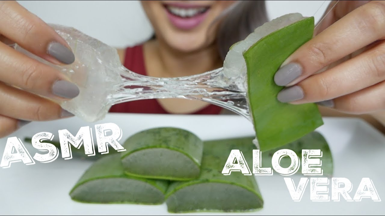 Asmr Aloe Vera Challenge Soft Sticky Crunchy Sounds N E Let S Eat Youtube Soooo i put a vote on my instagram page (@asmrphan). asmr aloe vera challenge soft sticky crunchy sounds n e let s eat