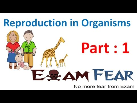 Biology Reproduction in Organisms part 1 (Introduction) class 12 XII thumbnail