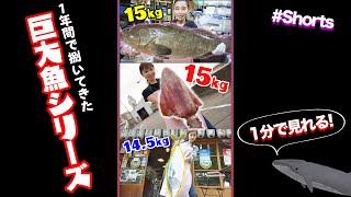 魚屋が捌いてきた歴代の巨大魚たち🐟#Shorts Fish cutting Pro VS biggest Fish ever!!!!