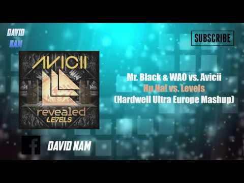 Hu Ha! vs. Levels (Hardwell Mashup) [TBM & David Nam Remake]