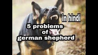 5 problems of German shepherd in hindi || dogs biography