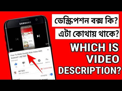 What is Description Box/Which is Video Description? | NETBID