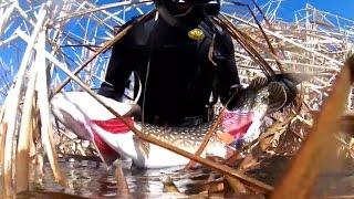 Подводная охота в Саратове на волге. Большие щуки.
