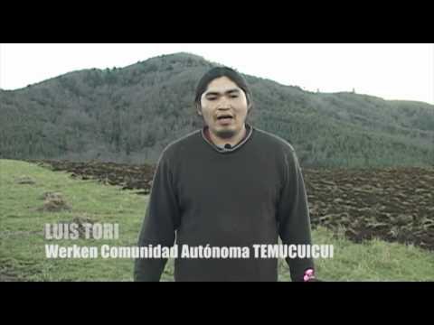 Comunidad Autónoma Temucuicui en proceso de recuperación productiva de tierras