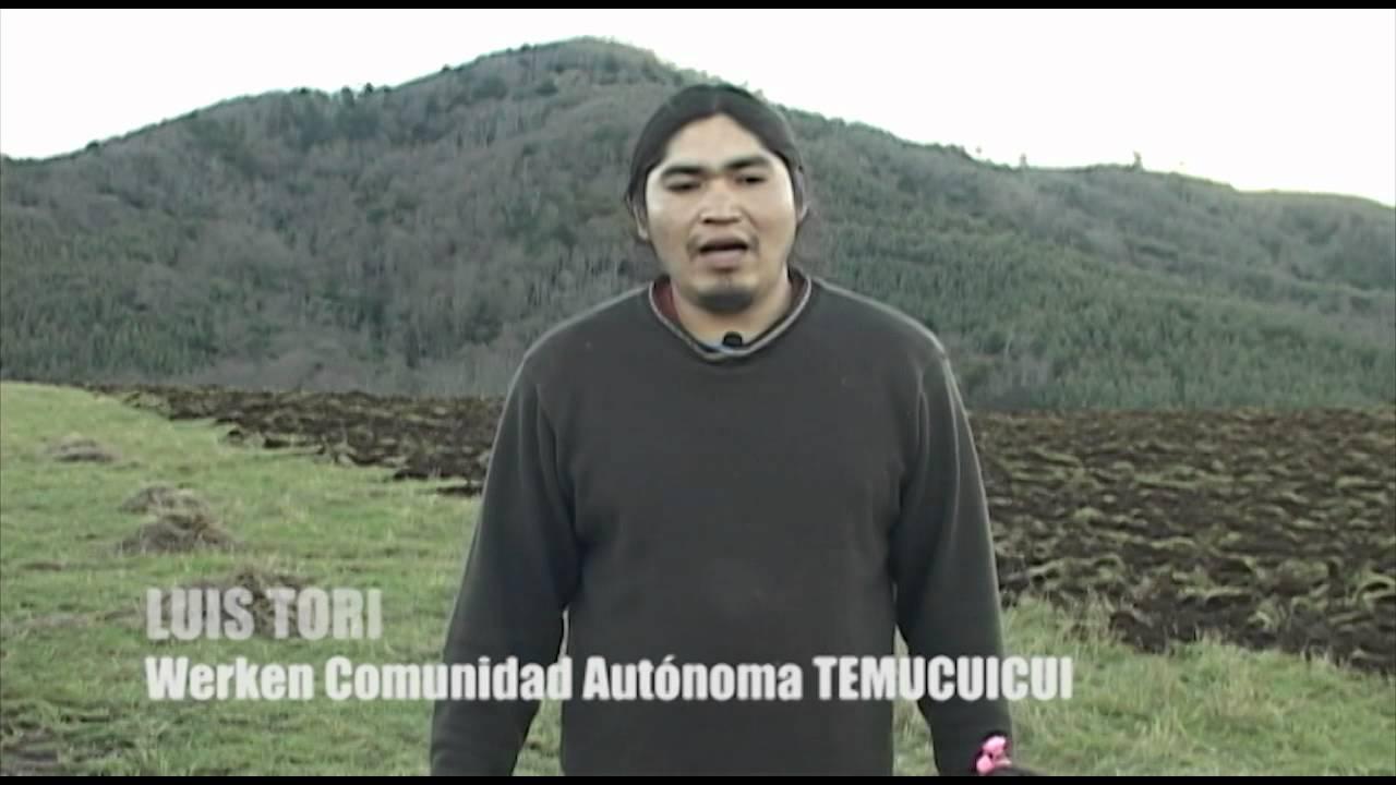 Comunidad Autónoma Temucuicui en proceso de recuperación productiva de tierras - YouTube