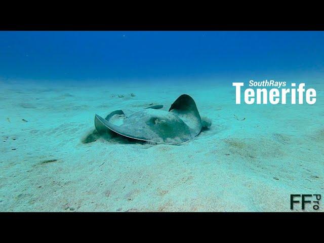 Tenerife SouthRays