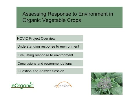 Participatory Variety Trials in Organic Vegetable Crops