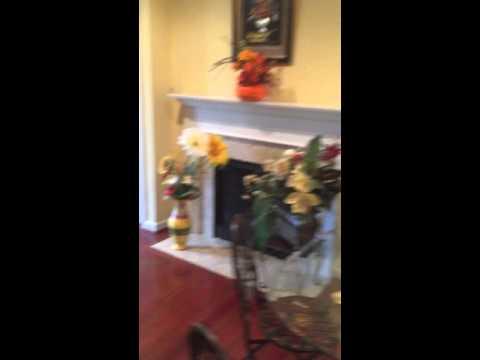 Basement For Rent In Gainesville VA