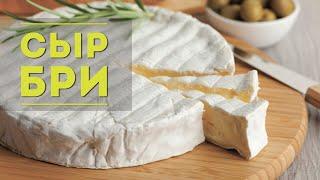 Готовим сыр бри в домашних условиях