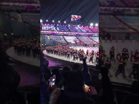 """Team USA marches in to """"Gangnam Style"""""""
