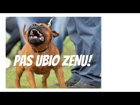 HOROR U PANCEVU: Staford ubio zenu, drugu spasavaju! (VIDEO)