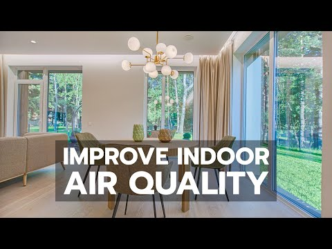 HEALTHY HOME: How To Improve Indoor Air Quality