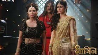 Shivanya Ritik DIE In The Last Episode Of Naagin Colors