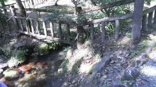 【全国名水100選】蒜山の名水 〜塩釜の冷泉〜