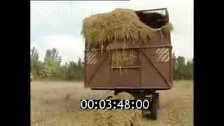 Сельское хозяйство России. (1997)(, 2015-10-18T18:23:12.000Z)