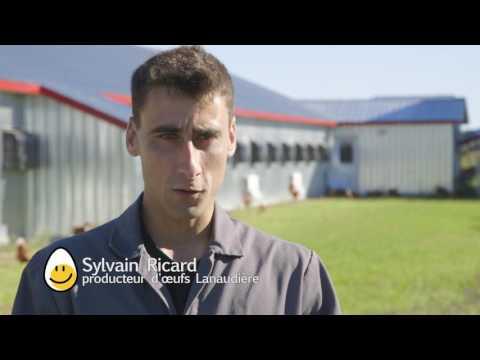 Rencontrez Sylvain et Danny Ricard, producteurs d'œufs biologiques dans Lanaudière