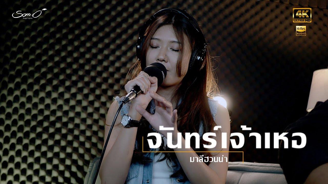 จันทร์เจ้าเหอ ☮️ มาลีฮวนน่า  -  Live Acoustic  Cover 「ส้มโอ Stage Fighter」