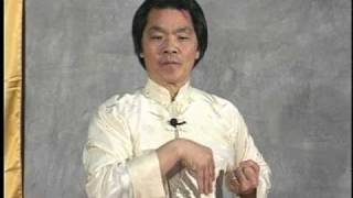 [T.W.C.] Shil Lim Tao form (in slow motion) - Grandmaster William Cheung.