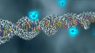 DNA and discovery: The Genome Analysis Centre
