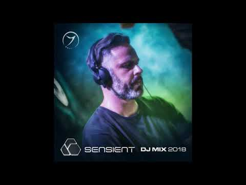 Sensient Best of 2018 Zenon DJ Mix
