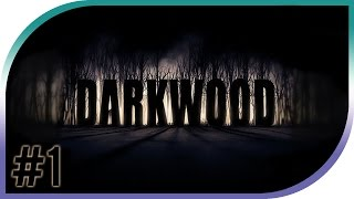 First Look- Darkwood Alpha 1.0 - Part 1