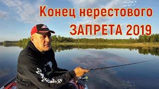 Ловля щуки. Рыбалка после нерестового запрета на Псковщине 2019.