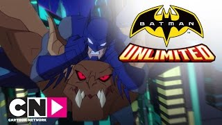 Бэтмен и Красный Робин против Мен-бэта | Бэтмен без границ | Cartoon Network