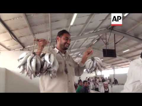 Livelihood of Yemeni fishermen in peril