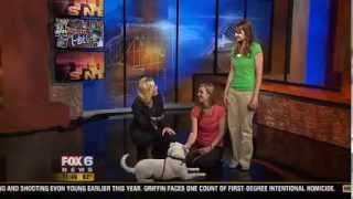 Murphy The 4-year-old Lab/dalmatian Mix On Fox6 News