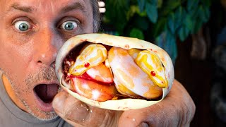 I GOT TWIN ALBINO SNAKES WHILE CUTTING SNAKE EGGS!! 20 FOOT SNAKE FUN!! | BRIAN BARCZYK