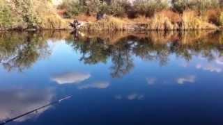 Рыбалка в Херсоне