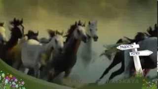 Новогодняя песня 'Молодая лошадь'