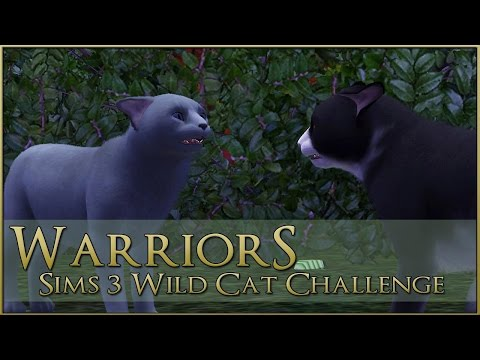 A Dark Storm at Sea • Warrior Cats Sims 3 Legacy - Episode #94