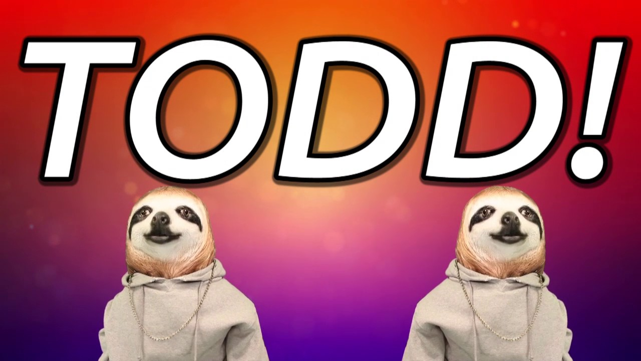 maxresdefault happy birthday todd! sloth happy birthday rap youtube