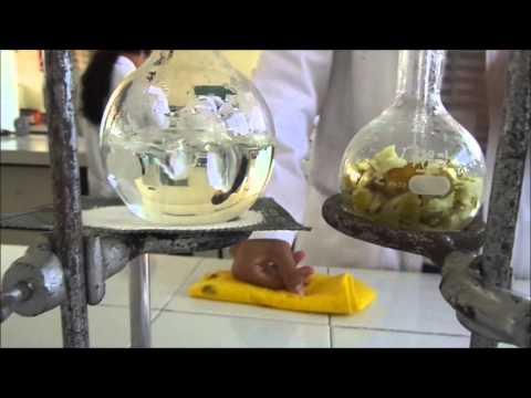 extracción de aceites esenciales por arrastre de vapor