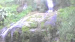 Morovis Puerto Rico, Cascada en el barrio Perchas